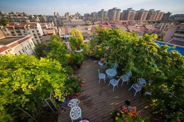 休大叔打造5层巴比伦空中花园 自造小森林,帝都最美屋顶风景