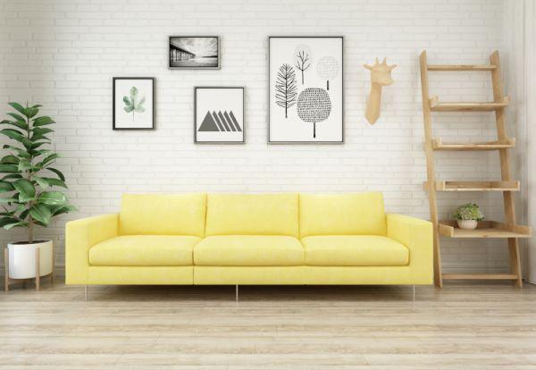 客厅养这3种绿植,不仅养人还旺运,看看你家养对了吗